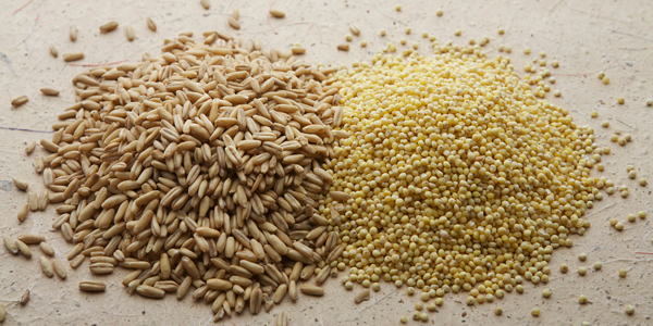 Food that prevent blackheads - Brown Rice