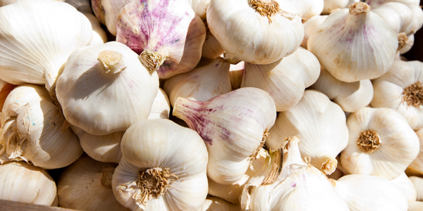 Food that prevent Blackheads - Garlic